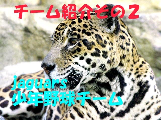 🌸○動物ジャガーズの写真その2入りWM(4)