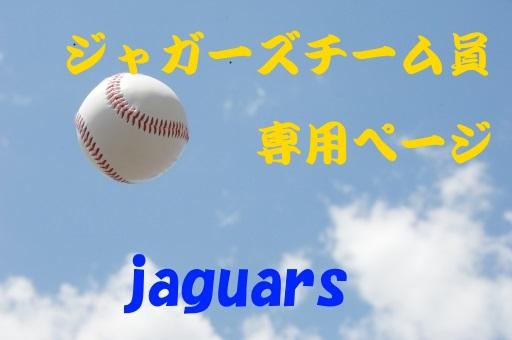 ◎青空に上がった硬式ボール077ジャガーズチーム員専用入りedcabc9cefe42e3ba193142bc15d8_t